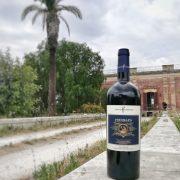 Piromàfo negroamaro wine